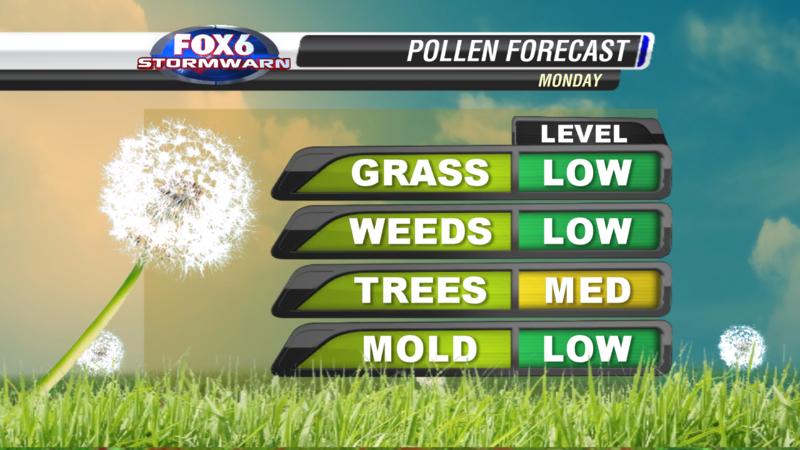 2013_Pollen