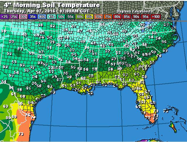 Current soil temps