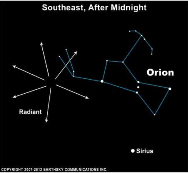 Orionid