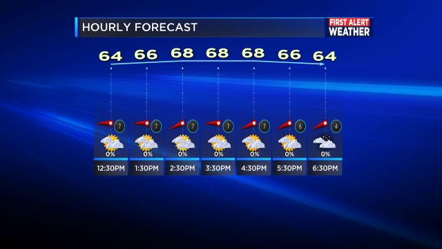THIS AFTERNOONS HOURLY FORECAST