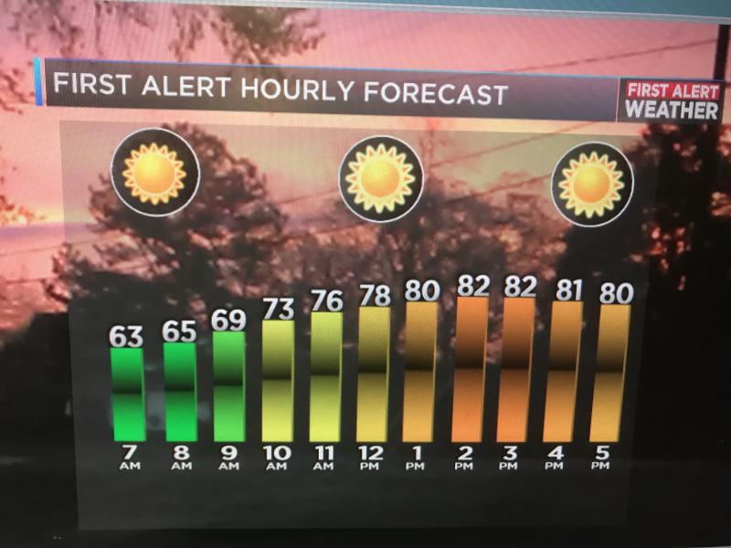 Hourly forecast2.jpg-large