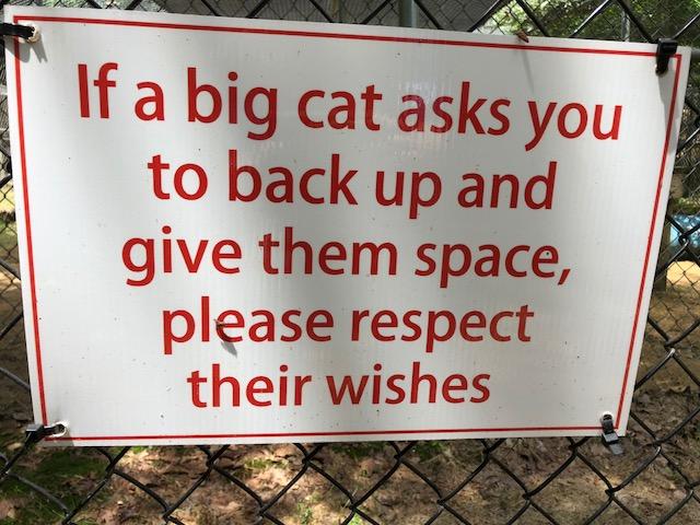 T4T BIG CAT SIGN